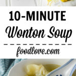 wonton soup long pin