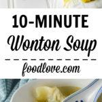 wonton soup long pin