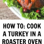 turkey roaster