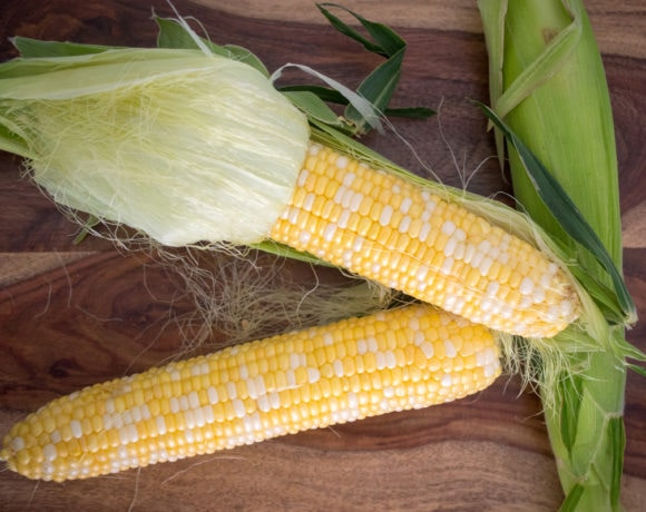 Fresh summer corn on the cob