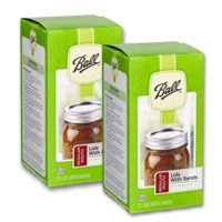Ball Regular Mouth Lids and Bands - 24 pack